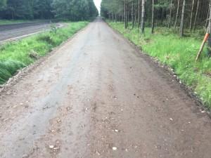 Gotowa droga leśna